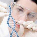 КОСМЕЦЕВТИКИ трансдермальные кремы