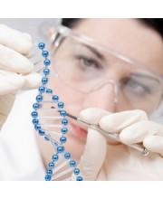 КОСМЕЦЕВТИКИ трансдермальные кремы  (15)